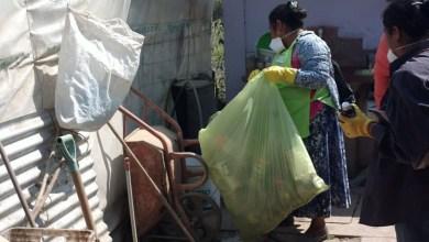 Photo of No se registraron casos de enfermedades transmitidas por mosquitos
