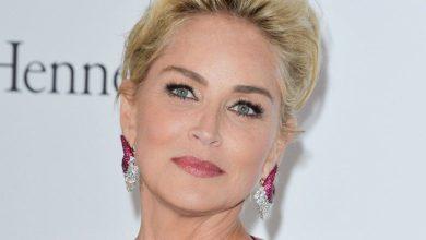 Photo of Le bloqueron la cuenta de una app de citas a Sharon Stone: ¡No creían que fuera ella!