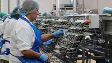 Photo of Arranca la cuarta etapa del Programa de Asistencia al Trabajo y la Producción (ATP): se extenderá hasta diciembre