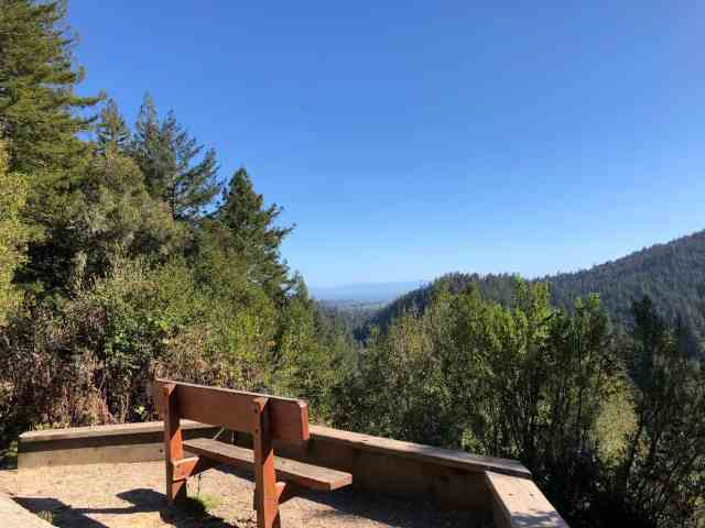 lookout bench in henry cowell