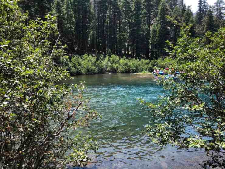 swimming hole truckee river