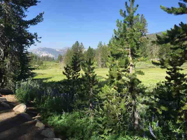 tahoe meadows interpretive trail