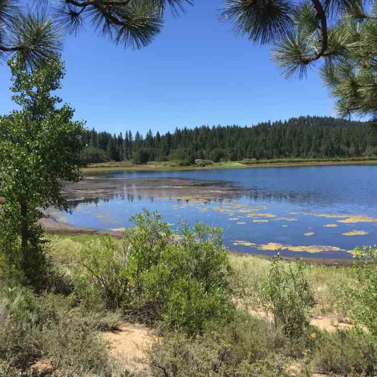 spooner lake is a easy hike to do in lake tahoe with kids