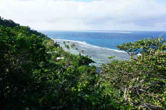 looking down at the  ocean and jungle