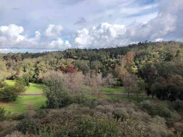View from activity hill at San Dieguito County Park