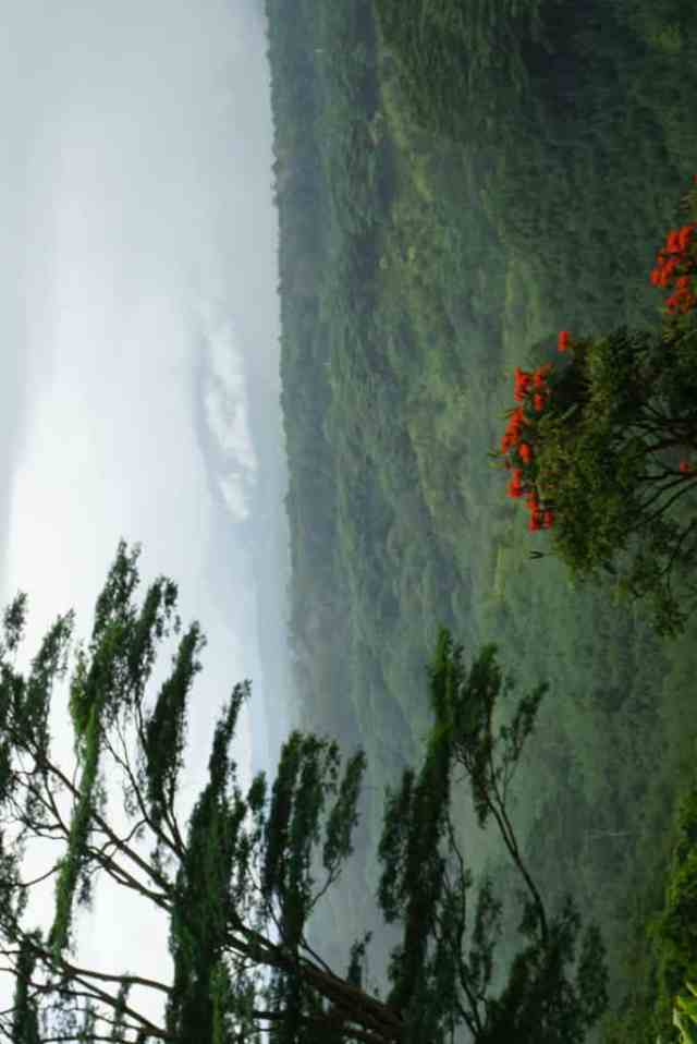 hiking near kapaa is some of the best hikes in kauai and a reason that staying on the east side of kauai is a good idea