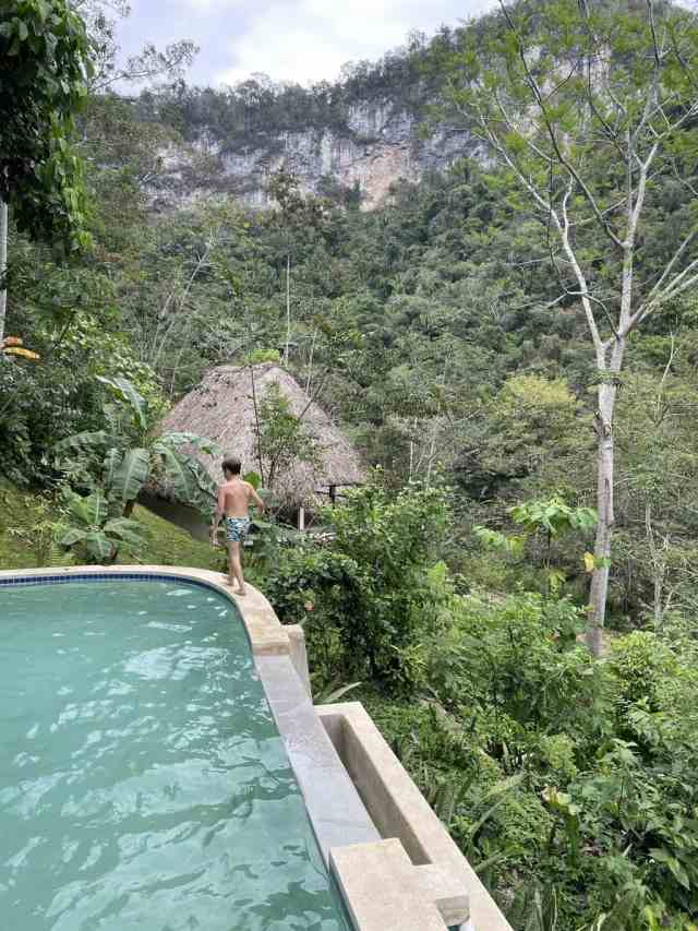 swimming pool at jungle lodge in Belize