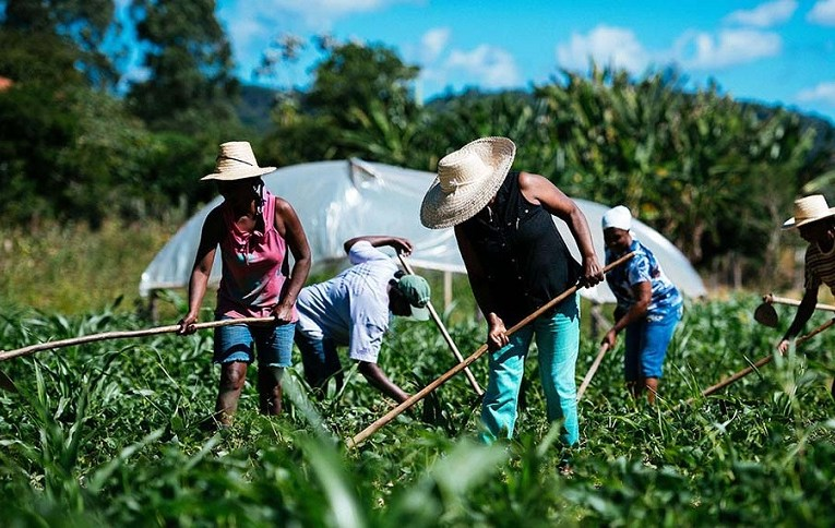 Senadora del FdT volvió a pedir la reincorporación de trabajadores despedidos por Macri en Agricultura Familiar Más de 400 técnicos, profesionales que fueron expulsados por la gestión cambiemita