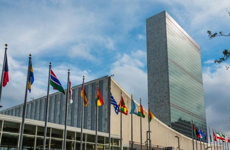 ONU reconoce como ejemplo de buenas prácticas sanitarias a la Argentina