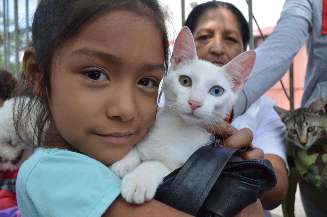 El fotógrafo Luis Bravo realizará sesiones gratuitas a beneficios de las familias del norte