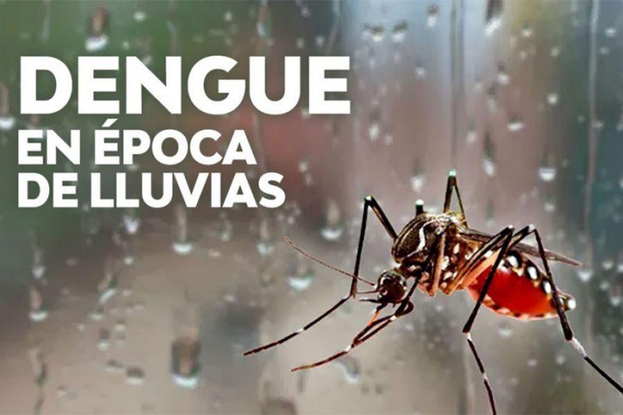 Cuidados para prevenir el dengue, zika y chikungunya en época estival