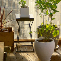 Charcoal Beams / Mod Plant Stands