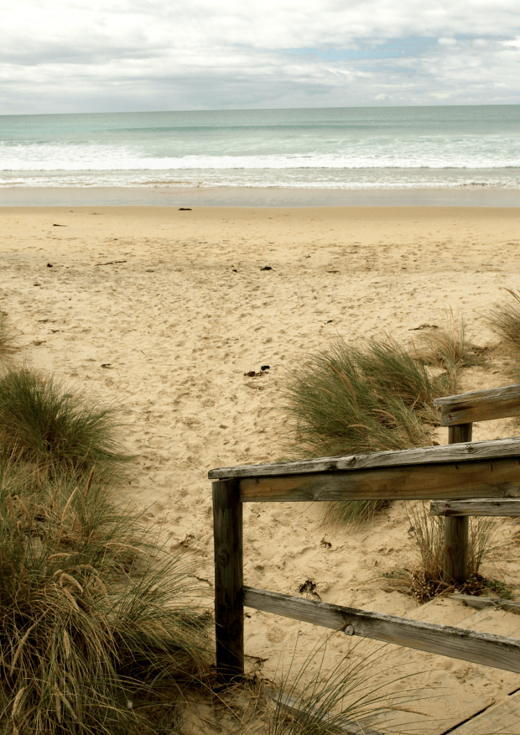 A tour of Bruny Island | Saltbush Avenue