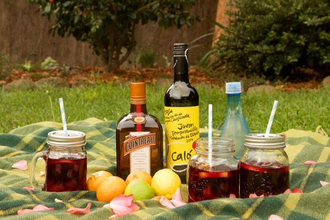 Citrus Summer Sangria | 10 Craft Project Ideas For Crafty People | Saltbush Avenue