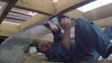 Apsauginio tinklelio montavimas karkasinio namuko grindyse