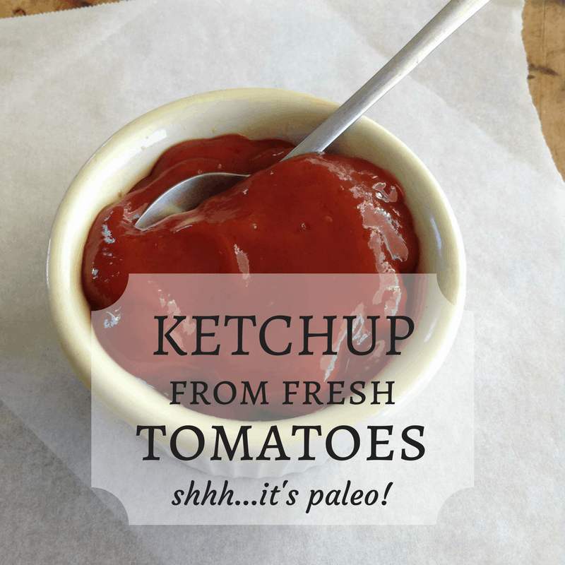 Homemade Ketchup From Fresh Tomatoes