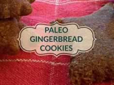 paleo gingerbread cookie recipe grain-free