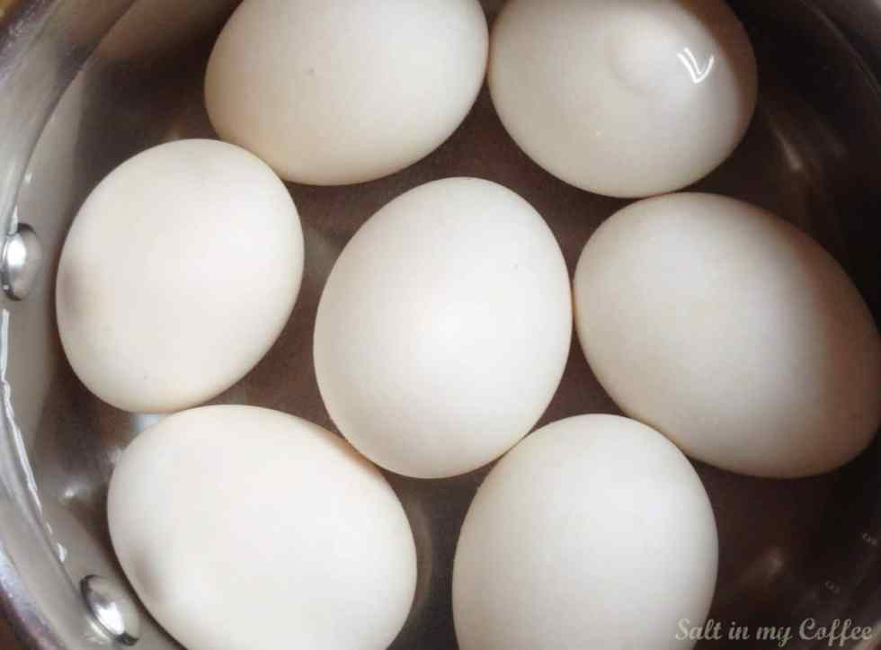 Duck Eggs 1