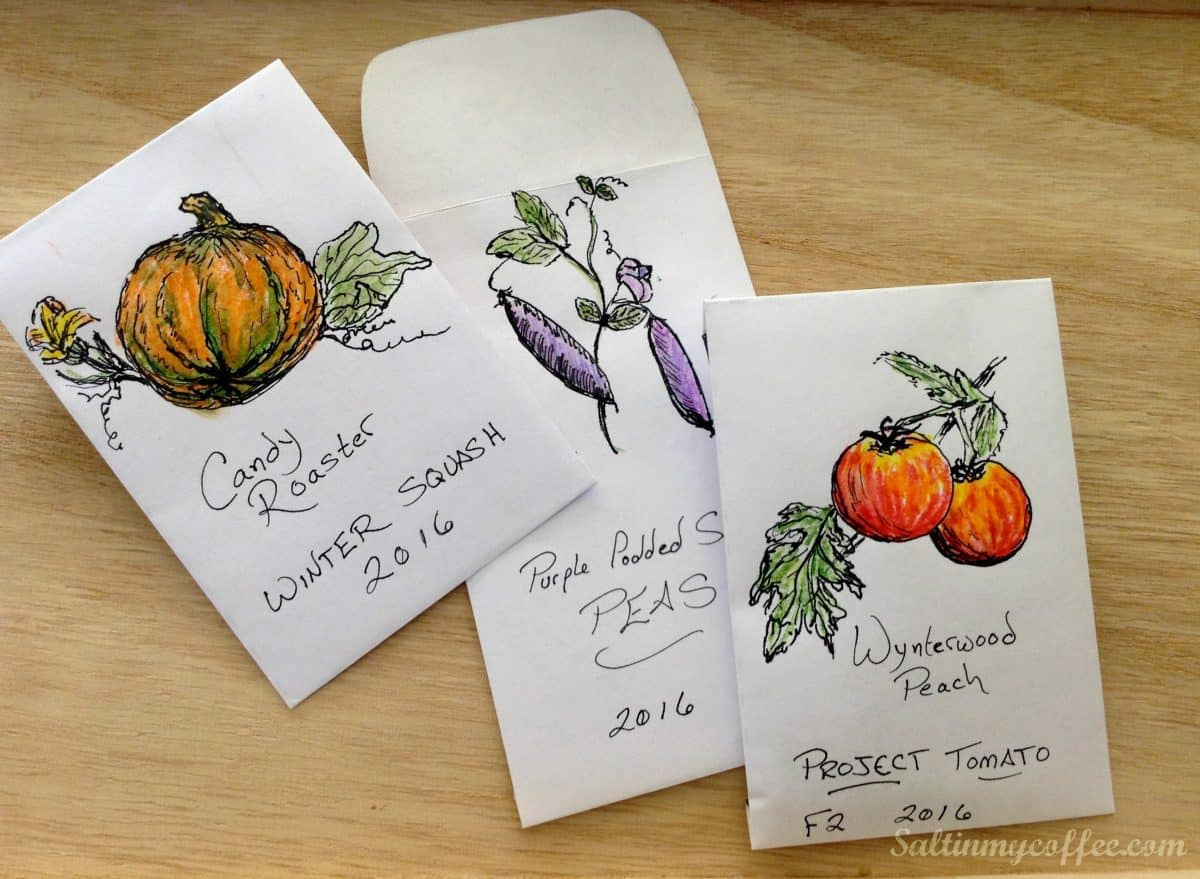 picture regarding Printable Seed Packets referred to as Cost-free Printable Seed Packet - Salt in just my Espresso