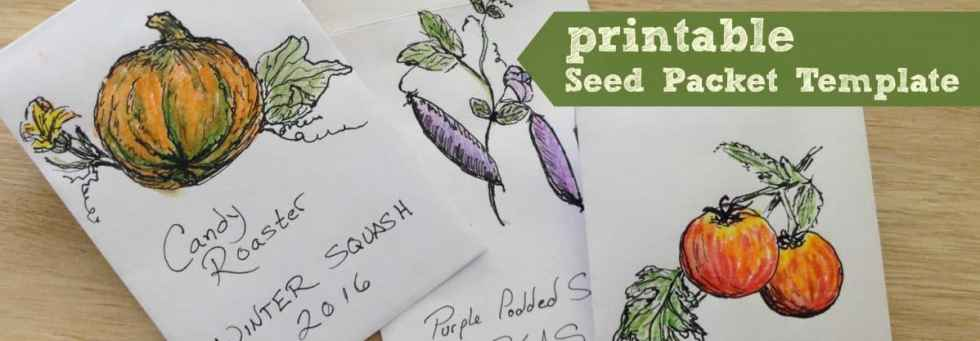 seeds-banner