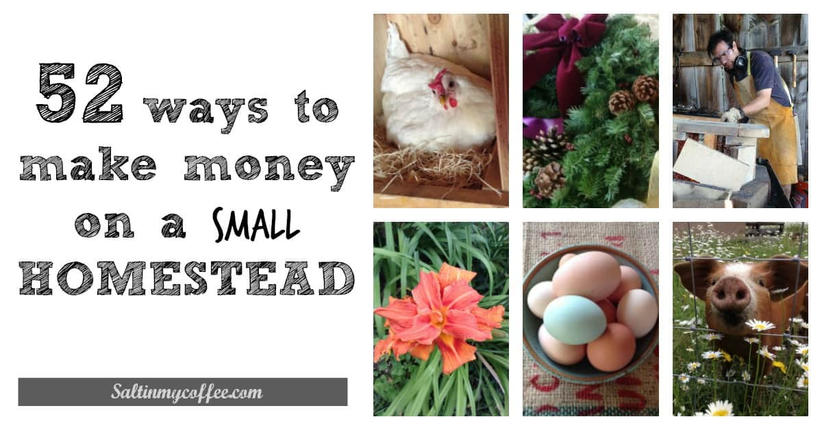 52 ways to make money on a small homestead celebrating a simple life. Black Bedroom Furniture Sets. Home Design Ideas