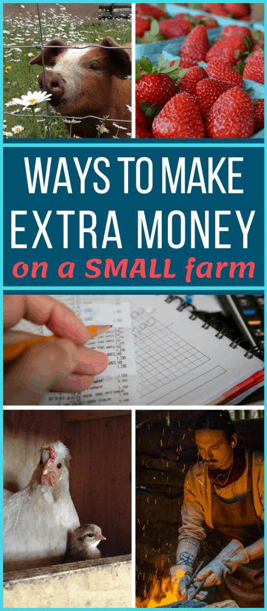 SUPER helpful list of how to get started with some of the best ways for making money farming - even on just a SMALL homestead!