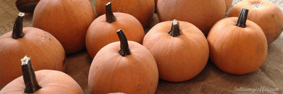 how to make pumpkin puree from pumpkins