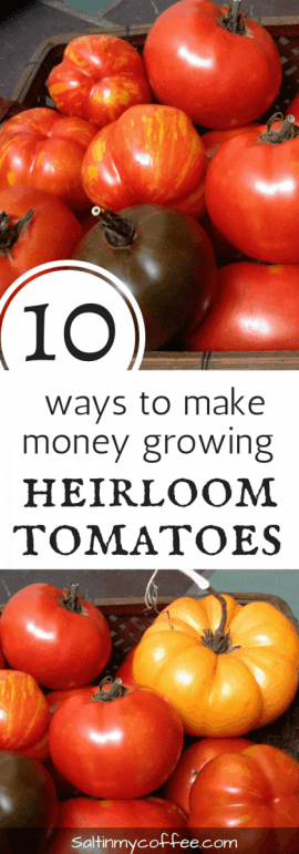 ways to make money growing heirloom tomatoes