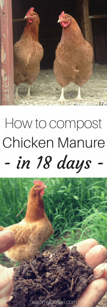 how to compost chicken manure in 18 days