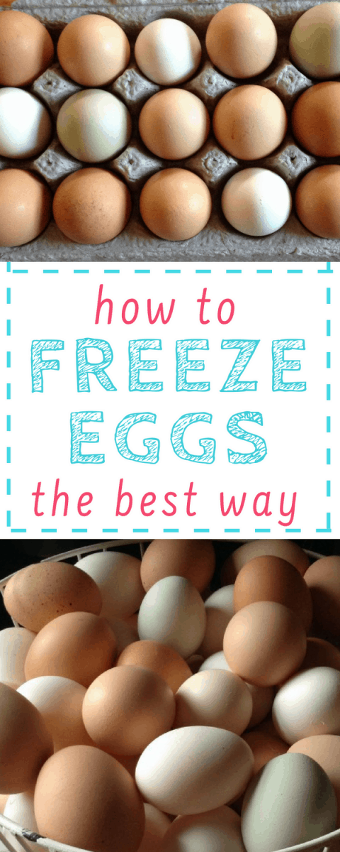 Good how-to for the best way to freeze extra eggs - they thaw well, and are great for long term storage