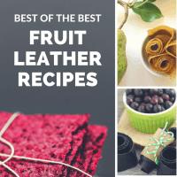 18 Amazing Fruit Leather Dehydrator Recipes