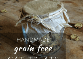 Grain Free Cat Treats Recipe