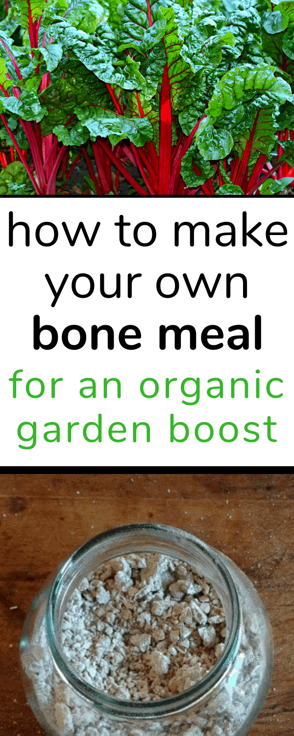 how to make your own bone meal