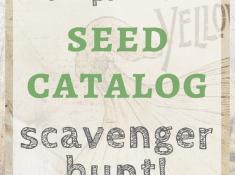 printable seed catalog scavenger hunt