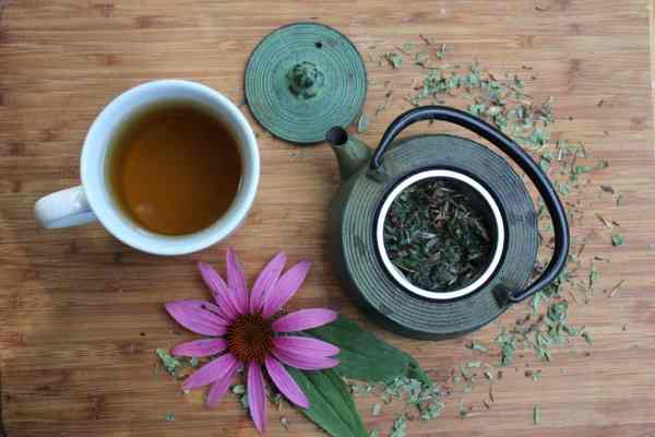 homemade echinacea tea blend
