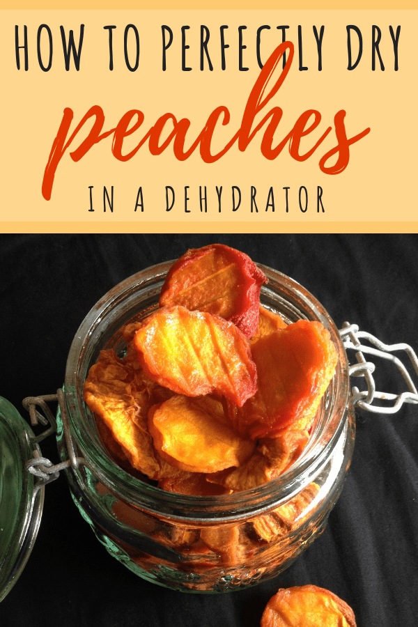 how to dry peaches in a dehydrator