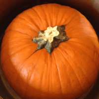 How to Cook a Whole Pumpkin in an Instant Pot
