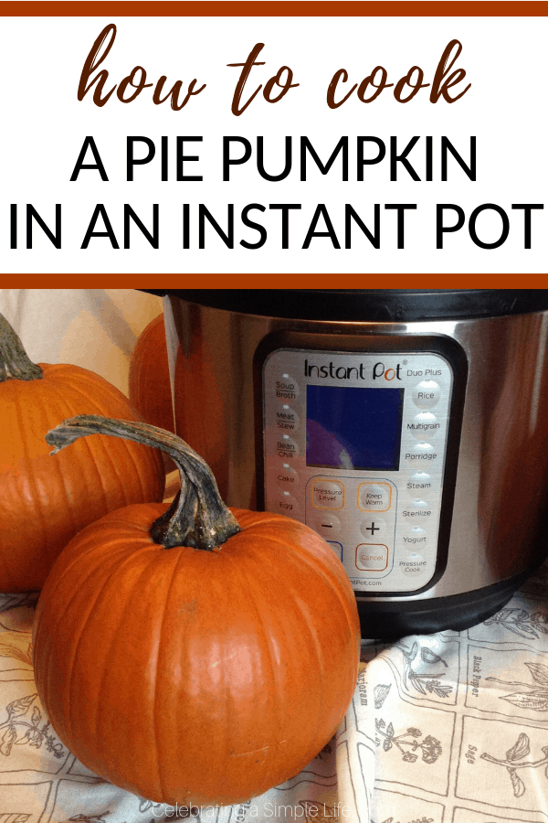 how to cook a pie pumpkin in an instant pot