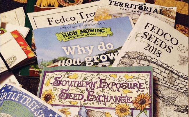seed companies slider
