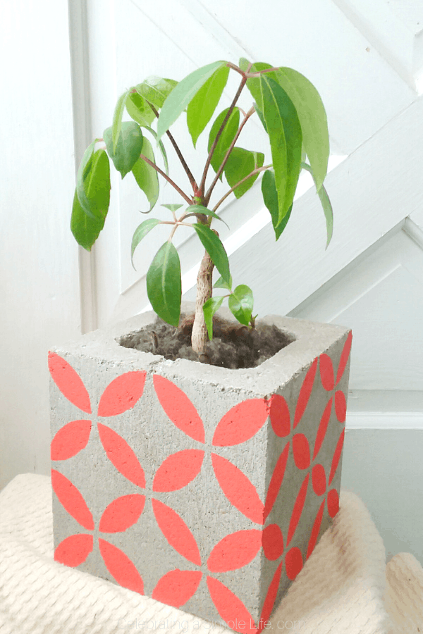 how to put a bottom on a cinder block planter