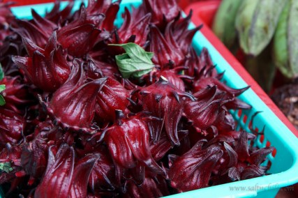 This mystery fruit is called a Roselle