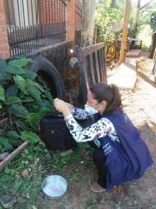 v-ambiental-225x300 Salto do Jacuí tem casos suspeitos de dengue