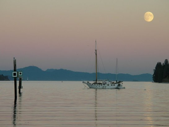 saltspring_island018