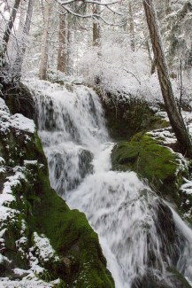 saltspring-island-waterfall_MG_4383bx
