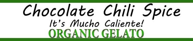Organic Chocolate Chili Spice