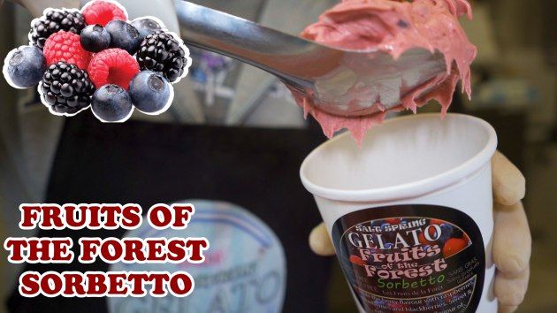 FRUITS-OF-THE-FOREST-FLAVOUR-THUMBNAIL