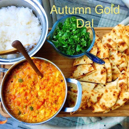 Autumn Gold Dal made from red lentils, Turmeric, ginger, garlic, Jalapeño served with jasmine rice and cilantro