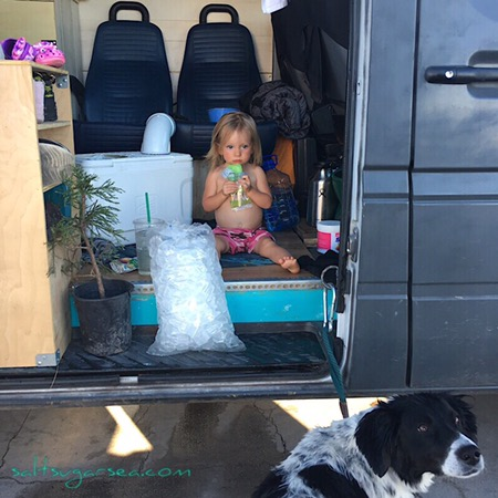 Baby eating popsicle on a popsicle pit stops