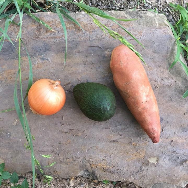 Sweet potato hash with avocado