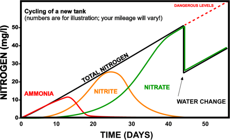 new tank syndrome and nitrogen cycle chart of test results